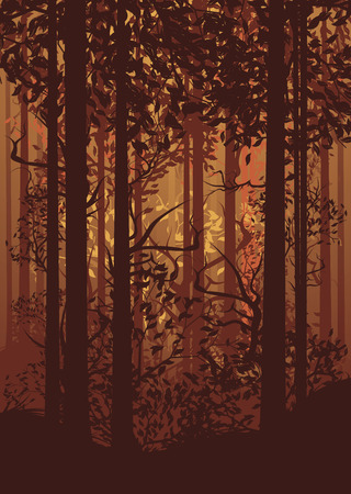 deciduous forest: Deciduous autumn forest landscape with silhouettes of trees and grass.