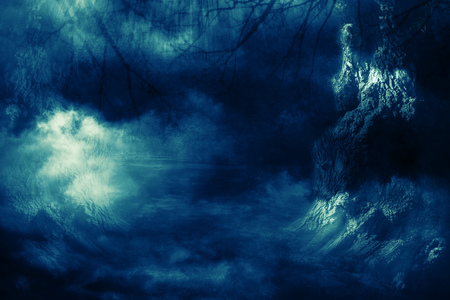 Halloween night background with spooky forest trees in fog.