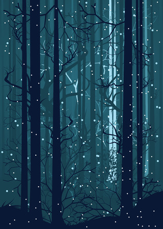midwinter: Falling snow in dark winter forest with trees silhouettes. Illustration
