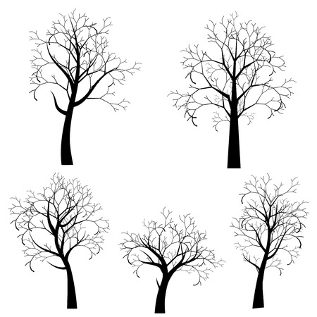 Decorative stylized tree design, abstract black silhouette. Illustration