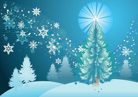 midwinter: Green fir trees in snowy forest, winter landscape.