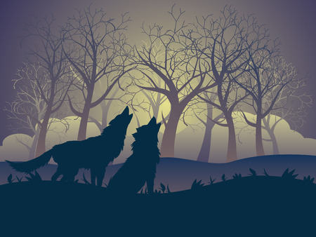 Silhouette del lupo che ulula alla luna nella foresta di notte.