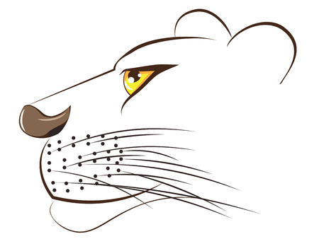 Cartoon illustration of a lioness head on white background. Illustration