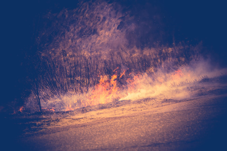 Burning dry grass in smoke and fire, early spring, vintage background.