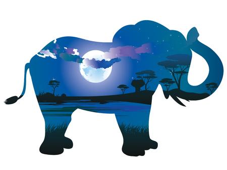 Scena variopinta di notte, paesaggio africano con la siluetta degli alberi e dell'elefante.