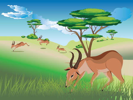 Cartoon sunny landscape with herd of antelopes. Ilustrace