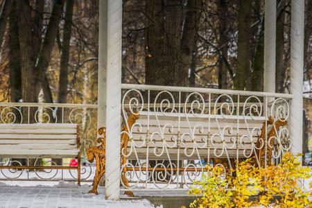 겨울 시간에 도시 공원에서 벤치와 장식 나무 골방.