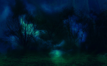 Night mystical landscape with trees in the dark. Banco de Imagens