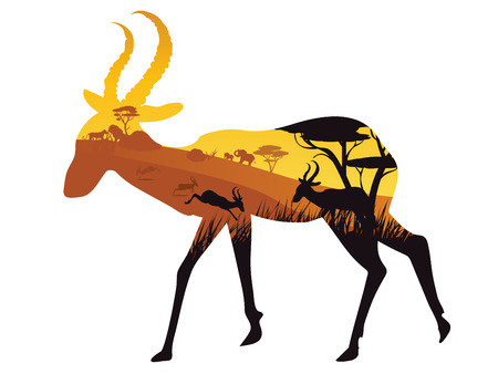 African landscape with silhouette of trees and antelopes