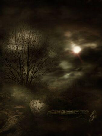 薄暗い影の神秘的な霧風景。