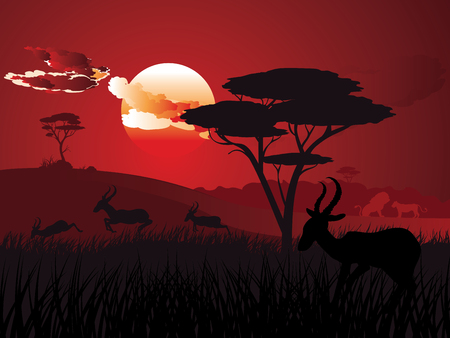 Colorful sunset scene, african landscape with silhouette of trees and antelopes.