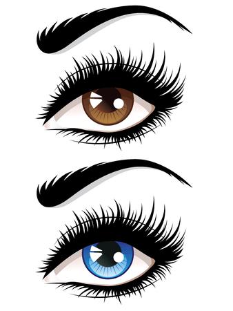 Detailed female eyes with long eyelashes illustration on white background. Vettoriali