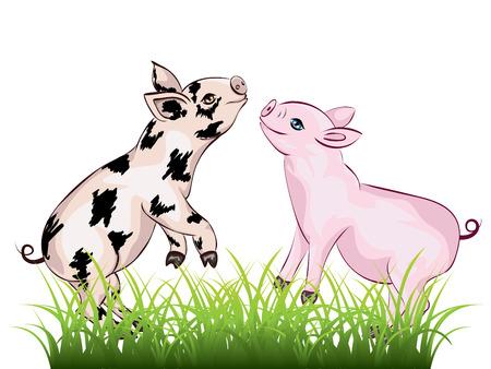 Cartoon cute and cheerful piglet illustration on white. Illustration