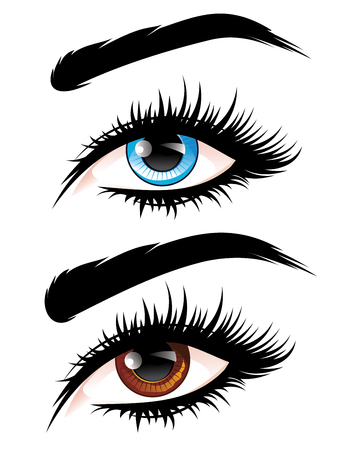 Detailed female eyes with long eyelashes illustration on white background. 向量圖像