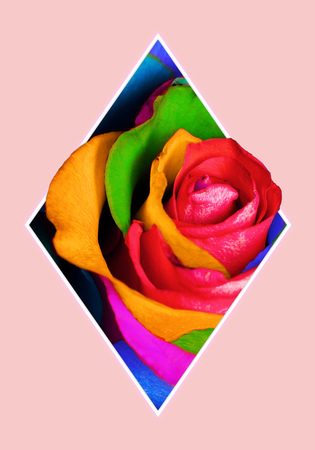 Geometric collage with multi colored rose flower and polygon, decorative background.