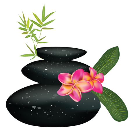 Zen stones heap with bamboo leaves and flower on white background. Foto de archivo - 104367182