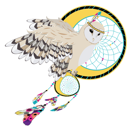 Cartoon owl with decorative dream catcher illustration.