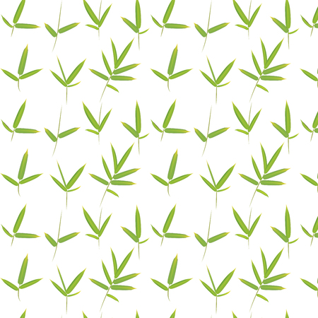 Jungle plants, green bamboo leaves pattern design background.