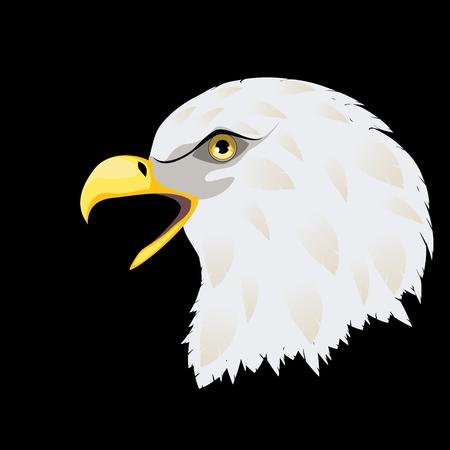 Cartoon stylized bald eagle head decorative design illustration. Illustration