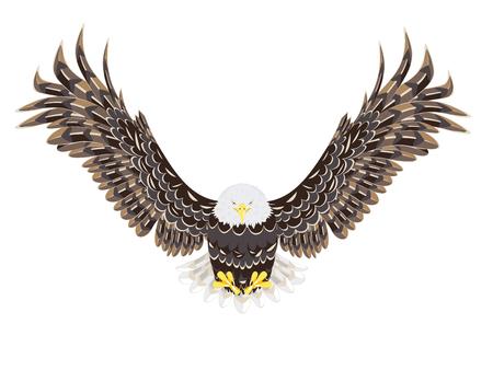 Cartoon stylized bald eagle decorative design illustration. Illustration