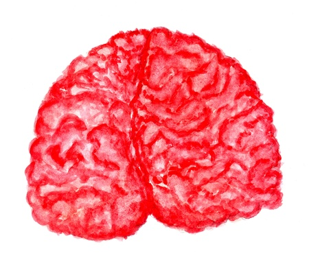 Hand drawn illustration of human brain painted in watercolors.