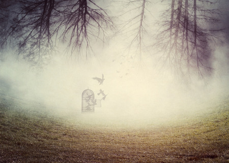Dark foggy scene with a 3d rendered vintage cage with crows, digital illustration. Stock Photo