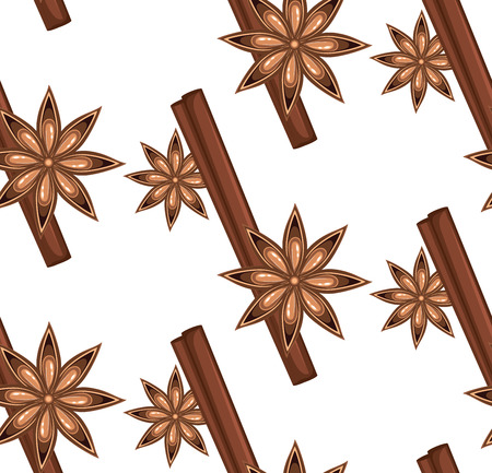 Star anise with stick of cinnamon, spices illustration. Illustration