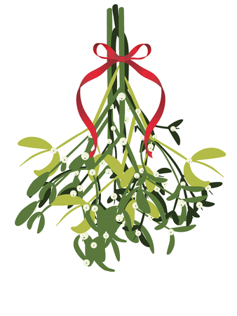 Decorative mistletoe branches with white berries illustration.