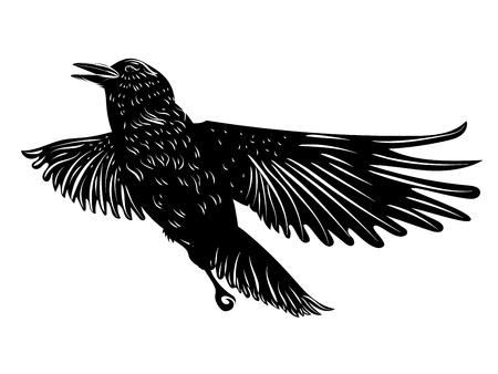 Stilisierte Silhouette eines schwarzen Raben, Krähe auf weißem Hintergrund.