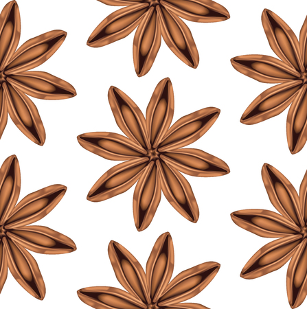 Aromatic spice star of anise illustration on white background. 向量圖像