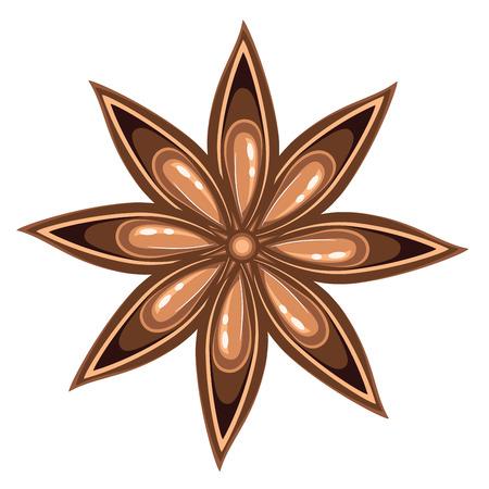 Aromatic spice star of anise illustration on white background. Ilustração
