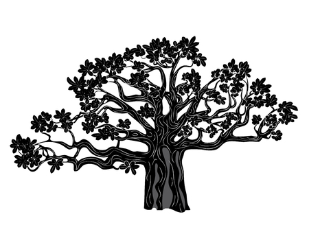 Stylized baobab tree, abstract tree silhouette design illustration.