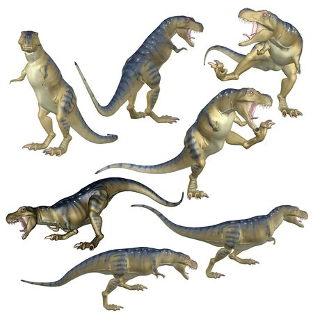 Prehistoric predator Tyrannosaurus rex dinosaur in different poses 3d rendered illustration. Stock Photo