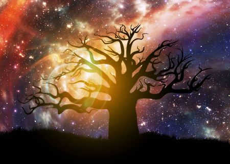 Fantasy night starry sky and alone tree background. Stock fotó - 129806270