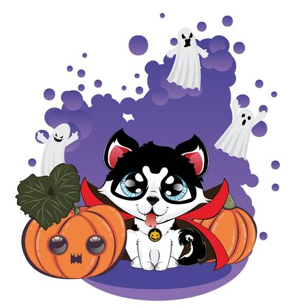 Cartoon siberian husky wear vampire coat, cute Halloween dog. Illustration