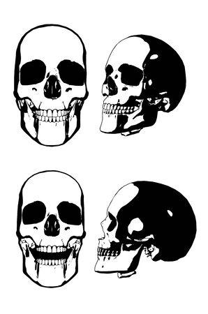 Black and white human skull grunge illustration.