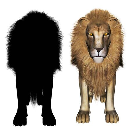 3d digital rendering illustration of a male lion and black silhouette Reklamní fotografie