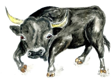 Watercolor illustration of black bull hand drawn design. Reklamní fotografie - 137766963