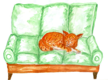 Hand drawn sketch of living room with comfort sofa and cat colorful illustration.