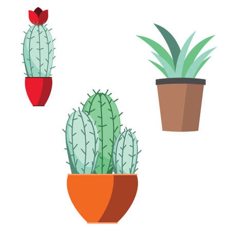 Collection of house plants abstract illustration on white background.