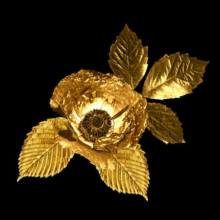 Abstract decorative yellow gold leaves and poppy flower on black background. 版權商用圖片