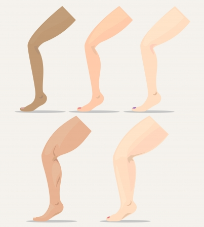 fleshy: Women legs with different skin and different shapes