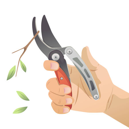 Vector of hand holding secateures to cut twigs and branches. Vector