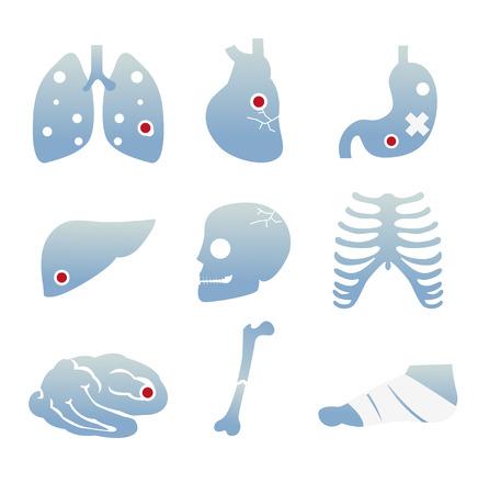 organos internos: Icono de los �rganos internos del cuerpo y de la enfermedad.