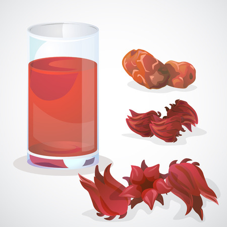 Fresh and dry roselle and dry Jujube. A glass of roselle juice. Vettoriali