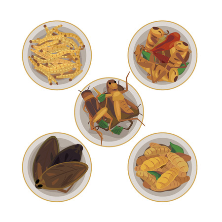 Fried insect for snack in bowl (fried bamboo worm, fried pimp, ) Illustration