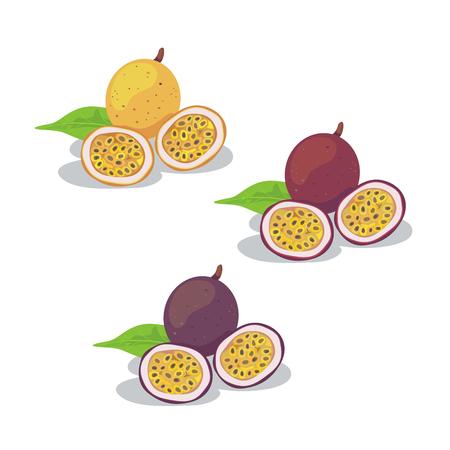Vettore di tre frutti della passione freschi di colore. Vettoriali