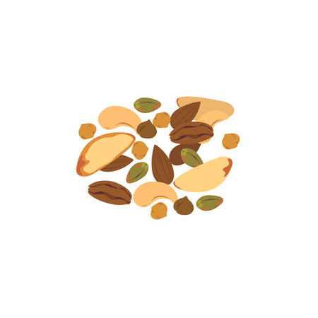 Vector of roasted mixed nuts on white background.
