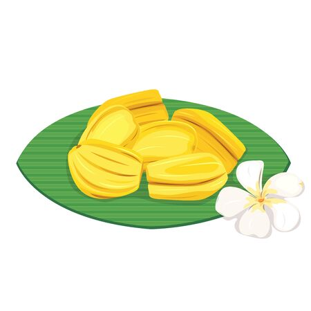 Vetor of fresh jackfruit on banana leaf. Illustration