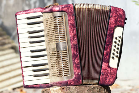 Picture with vintage accordion on a log